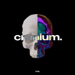 Cranium Pack
